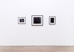 , Gallery 2,2:Portrait of Bryan,Celestial Portrait of Fred and Laura andPortrait of Laura
