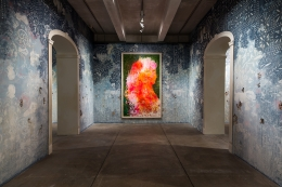 FIRELEI BÁEZ, Installation view: Firelei Báez: Bloodlines, The Andy Warhol Museum, Pittsburgh, PA, February 17 – May 21, 2017