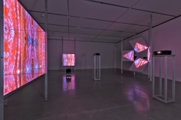 JOSIAH MCELHENY, Three Screens for Looking at Abstraction