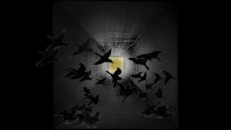 TABAIMO Crow