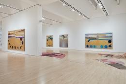 EAMON ORE-GIRON, Installation view:SOFT POWER, San Francisco Museum of Modern Art, October 26, 2019 - February 17, 2020. Courtesy SFMOMA. Photo:Ian Reeves