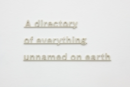 "Silver letters on a wall that read: ""a directory of everything unnamed on earth"""