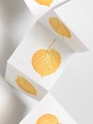 SPENCER FINCH Falling Linden Leaf