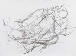 ROXY PAINE Drawing for Distillation, 2009
