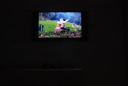 LI MING 李明, XX, Installation view, James Cohan Gallery, Shanghai, 2010
