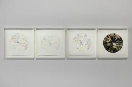 , PIERRE HUYGHELa saison des fetes,2010 Digital pigment print16 1/4 x 16 1/4 in.