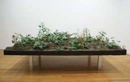 ROXY PAINE, Weed Choked Garden, 2005.  Thermoset plastic, polymer,