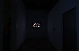 MARTHA COLBURN, One & One is Life 一加一即生活, Installation view, James Cohan Gallery, Shanghai, 2010