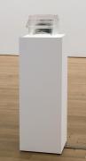 , JOSH KLINEThinkStrong,2013Blood doped with Welbutrin, cast-urethane, refrigeration elements, lightbox pedestal (fluorescent lights, wood, Plexiglas)47 1/2 x 14 1/4 x 11 1/2 in.