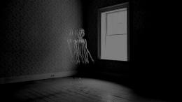 , HIRAKI SAWA Souvenir IV(still) 2012 Single channel black and white video Duration 2:20