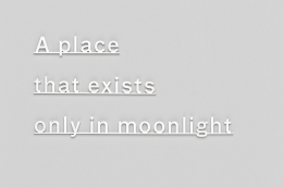 , A place that exists only in moonlight, 2015