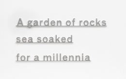 KATIE PATERSON Ideas (A garden of rocks sea soaked for a millennia)