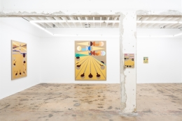 EAMON ORE-GIRON, Installation view:Darién Gap, Nina Johnson, Miami, FL,December 2, 2019 - January 4, 2020