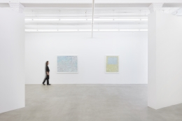 Passing through the gates of irresponsibility,installation view at James Cohan, 291 Grand St, March 1 - April 14, 2019