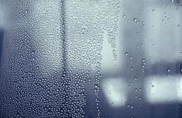 HANS HAACKE Condensation Wall, 1963/80