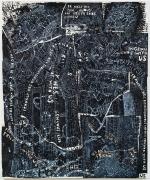 TRENTON DOYLE HANCOCKBlack Mamba2012 Acrylic and mixed media on canvas 72 x 60 x 3 in.