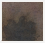 BYRON KIM Stain, Methylene Blue