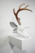 ERICK SWENSON Untitled (Velvet Horn) 无题 (丝ç»'鹿è§'), 2009