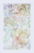 INGRID CALAME, # 181 Working Drawing, 2005, color pencil on trace Mylar, 176 x 88 inches