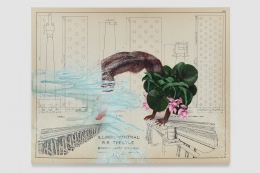 Industrial diagram with overlaid figure, tropical flowers, painted water