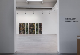 , HEATHER ROWE, WILLIAM MONK, RICHARD T. WALKER 2014 Installation view
