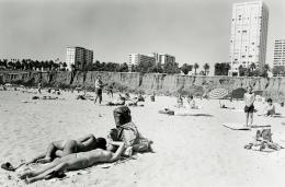 Topless Sunbather, Santa Monica
