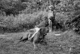 Girls with Mastiffs, Meredith, New Hampshire, 1982