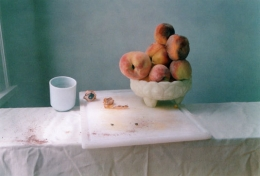 Untitled #49 (from the I Did Not Remember I Had Forgotten series), 2002, Chromogenic print, 18 3/4 x 23 1/2 inches