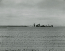 Untitled, from Farm Landscapes, n.d., gelatin silver contact print, 8 x 10 inches
