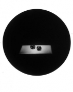 Dice, from the Paradise Series, 1993, gelatin silver print