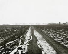 Near Sabin, 1983