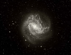 M83 Spiral Galaxy ,Extreme Wide Field