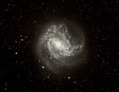 M83 Spiral Galaxy ,Extreme Wide Field