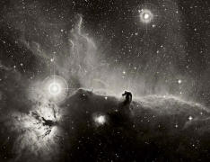Dust and Gas Adrift in Orion