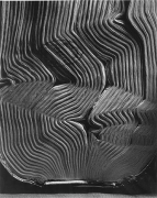 Book with Wavy Pages, 2001, gelatin silver print, 30 x 40 inches inches