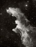 C 2118, Witch's Head nebula