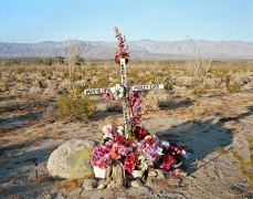 Descansas en Paz, near Borrego Springs, CA