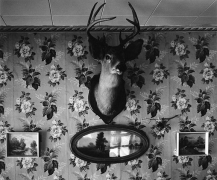 Buck, Peet House, 1975