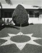 Sun City 1985