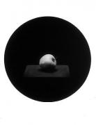 John Priola Apple from the series Paradise, 1993, gelatin silver print