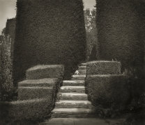 Steps, Great Dixter, from the series In the Garden