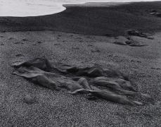 Paul Caponigro, Sandstone and Surf, 1959, vintage gelatin silver print