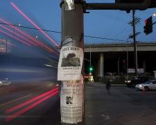 Lost Bird, Pico Boulevard, Los Angeles, chromogenic print