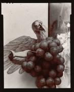 On the Wing, 1976, From Ephemera Portfolio, Toned gelatin silver print, 5 1/4 x 4 1/4 inches
