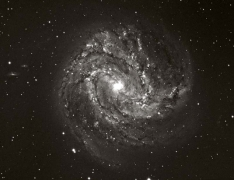 M83 Spiral Galaxy (in Hydra)