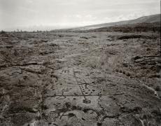 Petroglyphs, Hawaii, 1978