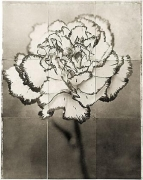 "Dianthus, from the series ""Reconstructions,""platinum palladium print on handmade Japanese gampi, sewn on Japanese washi"