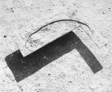 Star's Snake, 1980