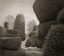 Passage, Levens Hall, from the series In the Garden, 2003, platinum print, 16 x 18 1/2 inches