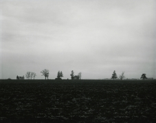 Untitled, from Farm Landscapes, 1981, gelatin silver contact print, 8 x 10 inches